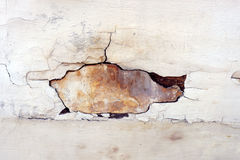 Detail of wall degraded Royalty Free Stock Images