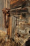 Detail of wall and harness clamp on old log barb Royalty Free Stock Images
