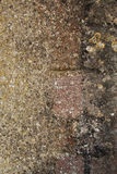 Detail of Wall texture stock photography