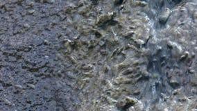 Detail of water falling. 03 stock video