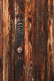 Detail of weathered wood Royalty Free Stock Image