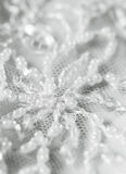 Detail of wedding dress Royalty Free Stock Photo
