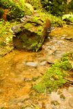 Detail weir. A small stream in the woods with the weir Royalty Free Stock Photography
