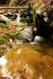 Detail weir. A small stream in the woods with the weir Royalty Free Stock Photo