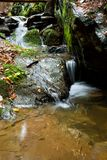 Detail weir. A small stream in the woods with the weir Stock Images