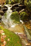 Detail weir. A small stream in the woods with the weir Stock Photo
