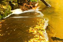 Detail weir. A small stream in the woods with the weir Royalty Free Stock Images