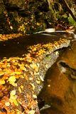 Detail weir. A small stream in the woods with the weir Royalty Free Stock Photos