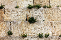Western Wall, Jerusalem , Israel Stock Image