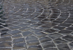 Detail of wet cobblestone road. In Lviv city Royalty Free Stock Photography