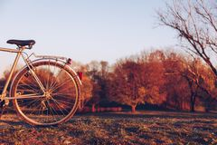 Detail wheel of bicycle on the green grass on blurred colorful a stock photo