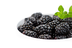 Detail of white bowl with pile of fresh blackberries Royalty Free Stock Photos