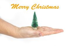 Detail of a woman`s hand holding a little Christmas tree with text in English `Merry Christmas` in white isolated background Stock Photography