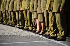 Soldiers in uniforms standing in formation during military ceremony. Detail with women in uniforms standing in formation during military ceremony royalty free stock photo