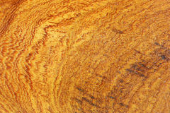 Detail of wood texture Stock Images