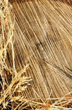 Detail of wooden cut texture and dry grass hay Stock Photography