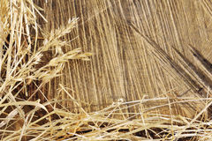 Detail of wooden cut texture and dry grass hay Royalty Free Stock Photos