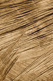 Detail of wooden cut texture - rings and saw cuts Stock Photo
