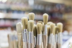 Detail of wooden paint brushes in store with great blur royalty free stock photo