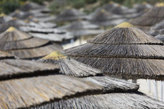 Detail of woven umbrellas above rows on beach in Cyprus. Stock Photo