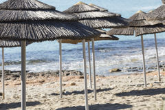 Detail of woven umbrellas above rows on beach in Cyprus. Royalty Free Stock Photos