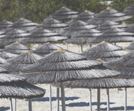 Detail of woven umbrellas above rows on beach in Cyprus. Stock Image