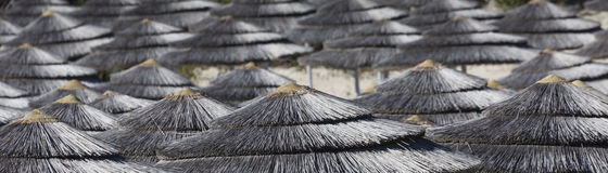 Detail of woven umbrellas above rows on beach in Cyprus. Royalty Free Stock Photography