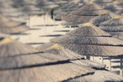 Detail of woven umbrellas above rows on beach. Selective Focus.  royalty free stock photography