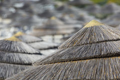 Detail of woven umbrellas above rows of many relaxing beds and l Royalty Free Stock Photos