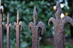 Detail of a wrought iron fence Stock Photography