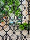 Detail of wrought iron gate. Courtyard of Cordoba, Spain.  Stock Photos