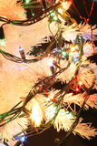 Detail of xmas tree Stock Image
