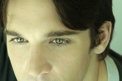 Detail of young man's eyes. Close-up portrait of male model showcasing green eyes with slight green cast Royalty Free Stock Images