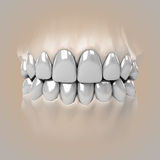 Detail zoom view on clean pure white glossy teeth Royalty Free Stock Image