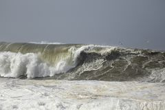 Big stormy sea wave Royalty Free Stock Photography