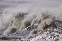 Detailed big wave Royalty Free Stock Image