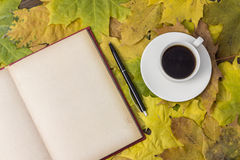 Detailed book, bright autumn leaves, a hot drink in a mug Royalty Free Stock Photo