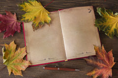 Detailed book. Opened old book among yellow leaves Stock Photo