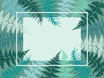 Detailed bracken herbs border. Detailed bracken herbs image, fern frond grass card with border. Blue tropical forest plant leaves decoration background. Fern Stock Photo