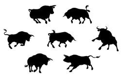 Detailed Bull Silhouettes Stock Image