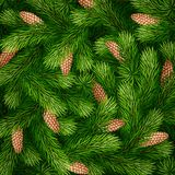 Detailed Christmas tree branches background. Detailed fir branches background for greeting card, poster, banner, website, header. Vector illustration Royalty Free Stock Image