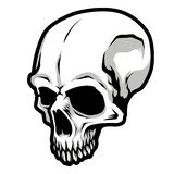 Detailed Classic Skull Head Black and White Illustration. Great for your graphic resources, merchandise, etc royalty free illustration