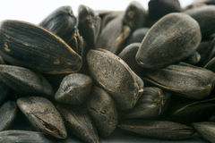 Detailed close up shot of black sunflower seeds. On a white background Stock Images