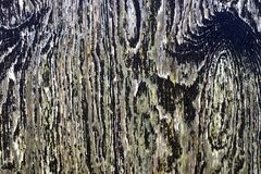 Detailed close up view on different wood surfaces showing planks logs and wooden walls in high resolution. Found in germany royalty free stock photo