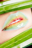 Detailed closeup of female's lips. Royalty Free Stock Images