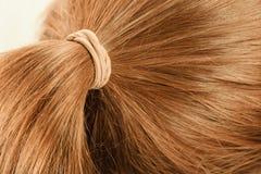 Free Detailed Closeup Of Brown Hair In Ponytail Royalty Free Stock Photos - 124352328