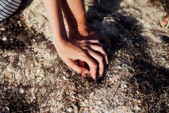 Detailed closeup photo of a woman`s and man`s hand. They are sitting in the sand and holding their hands stock image