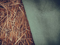 Detailed closeup of scattered hay Royalty Free Stock Image