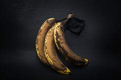 Detailed closeup view of old stained expired banana fruits Royalty Free Stock Image