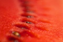 Detailed closeup of watermelon. Detailed close up of watermelon in home royalty free stock photography